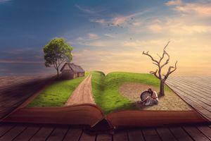 Заставки книга, закат, деревья