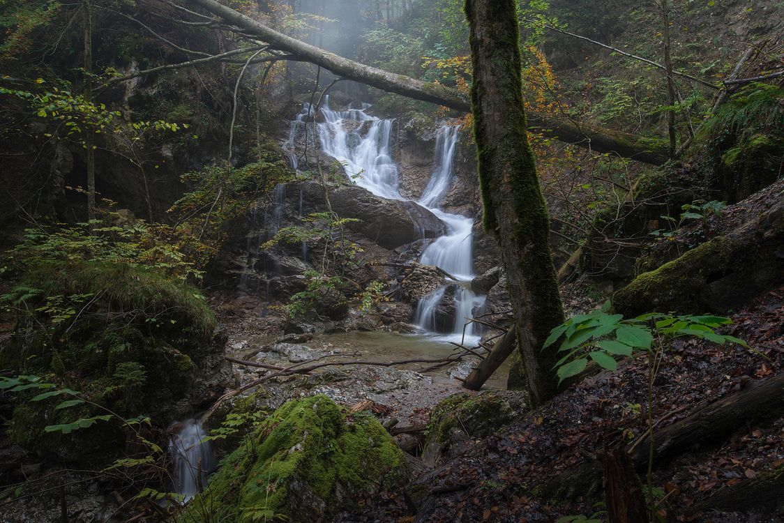 Фото бесплатно осень, лес, деревья, речка, ручей, водопад, пейзаж, пейзажи