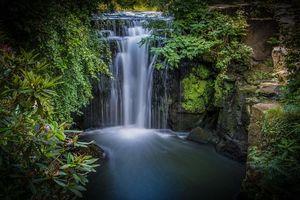 Заставки водопад, Jesmond Dene Park, Ньюкасл-апон-Тайн, Англия, кусты, Newcastle, Jesmond Dene Waterfall
