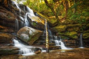 Бесплатные фото лес,деревья,скалы,камни,водопад,пейзаж