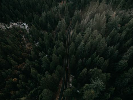 Photo free view from above, trees, auto