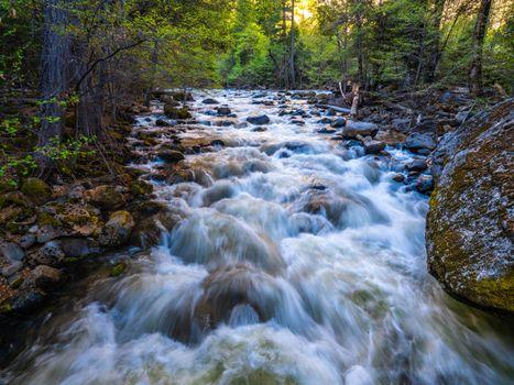 Фото бесплатно деревья, реки сша, камень