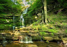 Бесплатные фото лес, деревья, скалы, камни, водопад, пейзаж