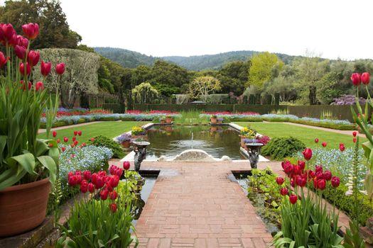 Photo free california, filoli, garden