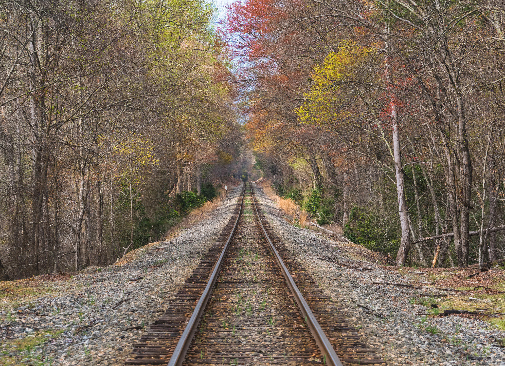Обои осень, железная дорога, лес, деревья
