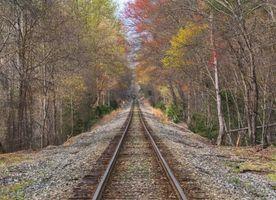 Фото бесплатно осень, железная дорога, лес