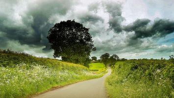 Бесплатные фото поле,холмы,дорога,деревья,пейзаж