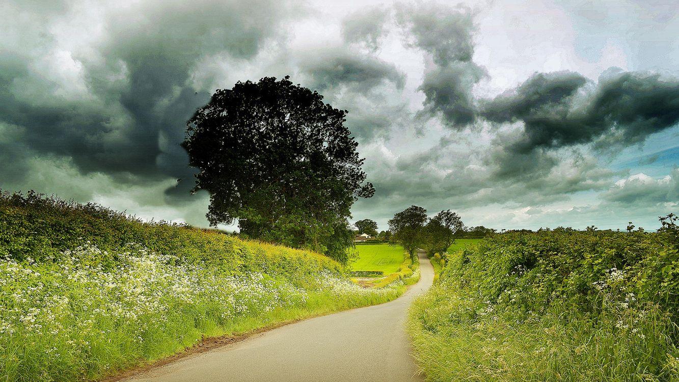 Фото бесплатно поле, холмы, дорога - на рабочий стол