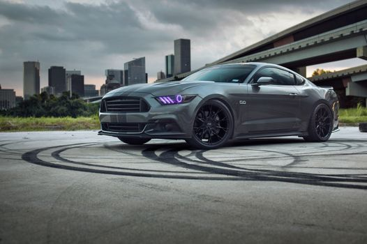 Pictures of photos of Ford Mustang, Ford, auto