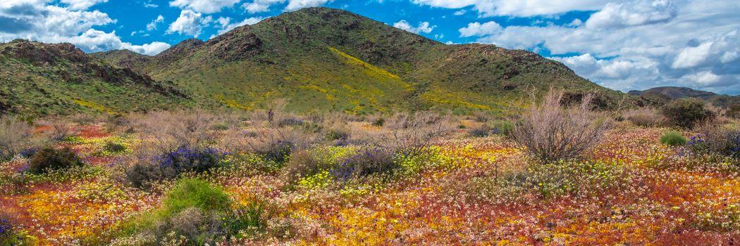 Фото бесплатно парк, горы облака, горы калифорнии