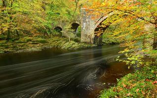 Бесплатные фото осень,река,мост,лес,деревья,пейзаж
