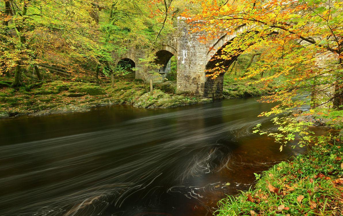 Фото бесплатно осень, река, мост, лес, деревья, пейзаж, пейзажи