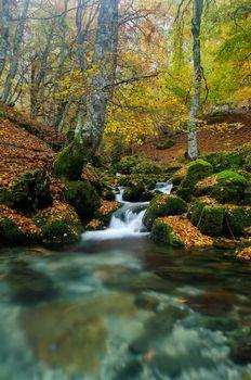 Photo free landscape, nature, autumn waterfall