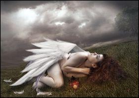 Фото бесплатно поле, тучи, девушка ангел