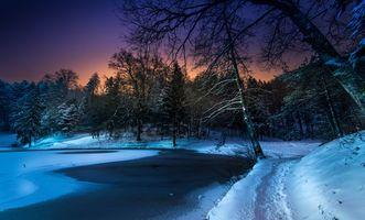 Заставки зима, путь, лес