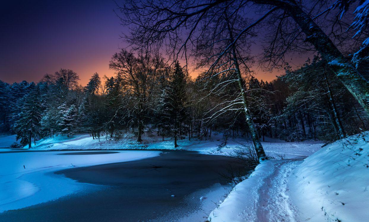 Фото бесплатно зима, закат, озеро, снег, лес, деревья, тропинка, пейзаж, пейзажи