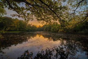 Заставки озеро, закат, лес