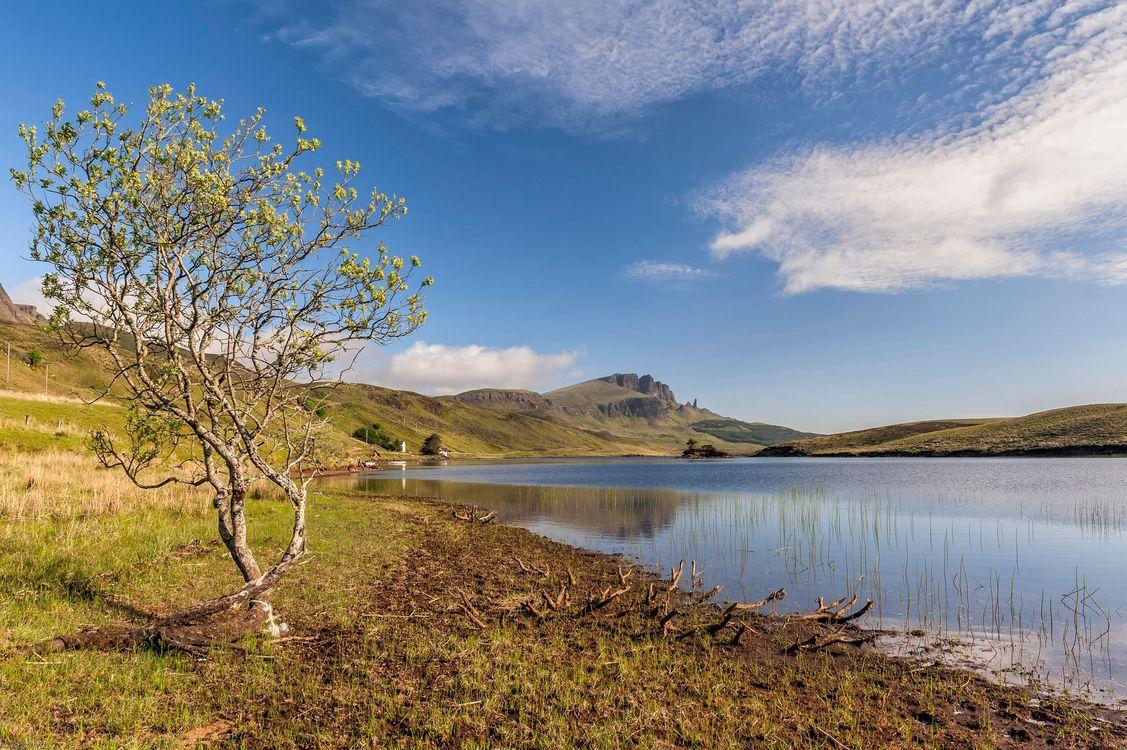 Фото бесплатно озеро, холмы, дерево - на рабочий стол