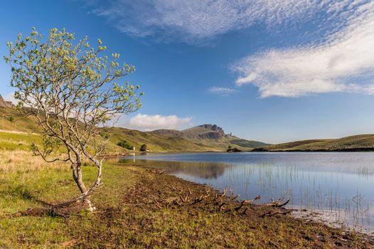 Фото бесплатно озеро, холмы, дерево