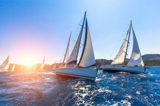 Photo free the sea, yachts, regatta