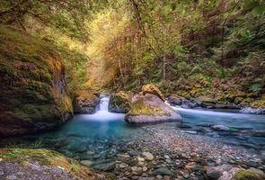 Заставки река,лес,деревья,водопад,камни,пейзаж