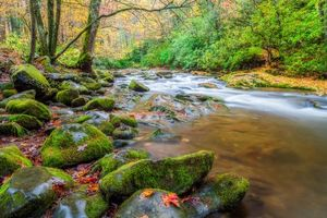 Photo free Smoky Mountains National Park, Great Smoky Mountains Park, Tennessee