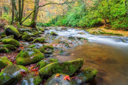Фото бесплатно Smoky Mountains National Park, Грейт Смоки Маунтинс Парк, штат Теннесси