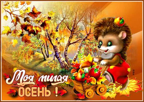 Postcard free hedgehog, leaves, branch