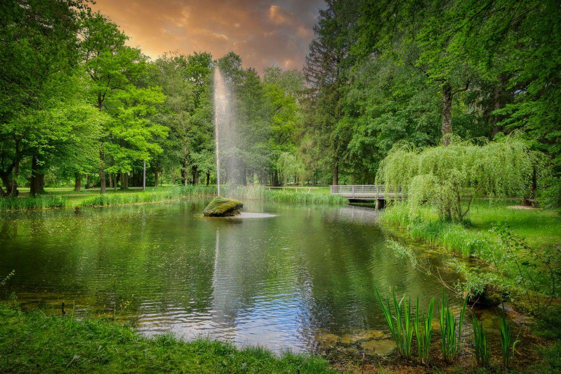 Фото парк Парк kurpark верисхофен - бесплатные картинки на Fonwall