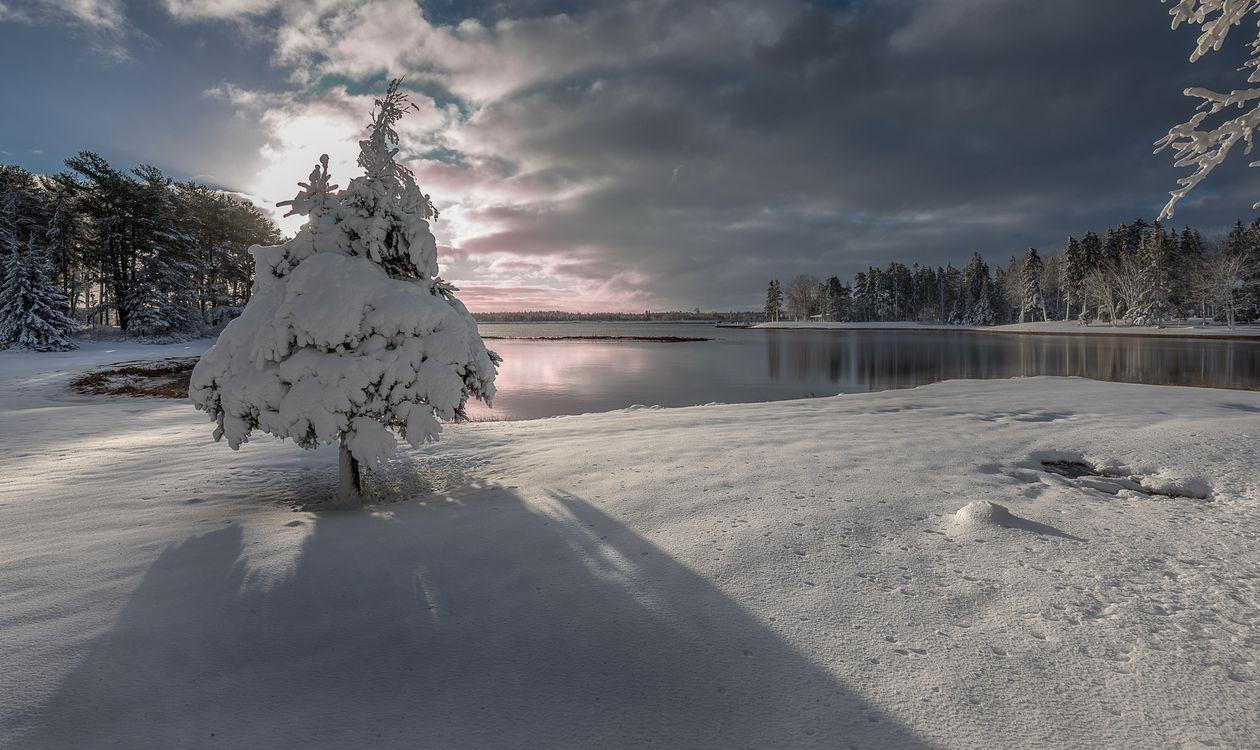 Обои зима, закат солнца, озеро, снег, деревья, отражение, лес картинки на телефон