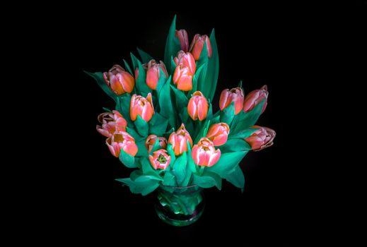 Фото бесплатно букеты чёрного цвета, цветы, букет