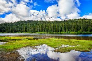 Фото бесплатно Mt Rainier National Park, река, горы