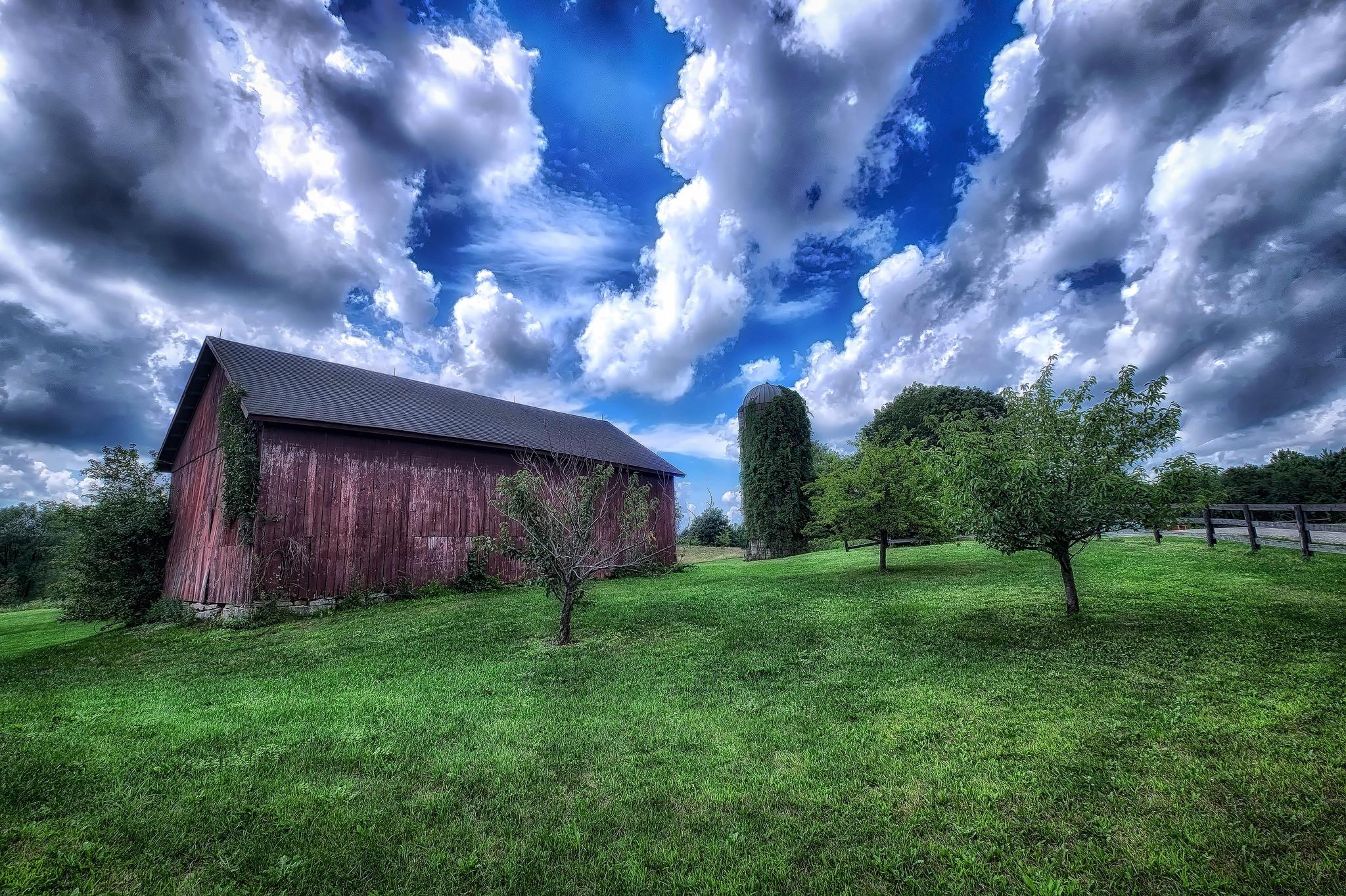 Обои поле, дом, сад, дорога