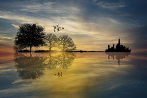 Фото бесплатно закат, стая птиц, море