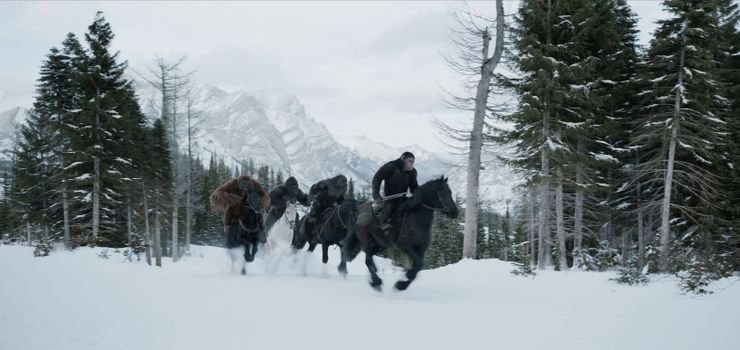 Photo free winter, War For The Planet Of The Apes, 2017 Movies