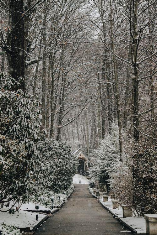 Фото бесплатно церковь, деревья, путь - на рабочий стол