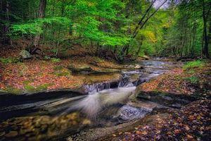 Бесплатные фото река,лес,деревья,водопад,осень,природа