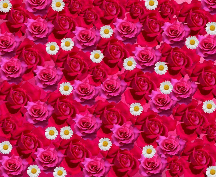 цветочный фон · бесплатное фото