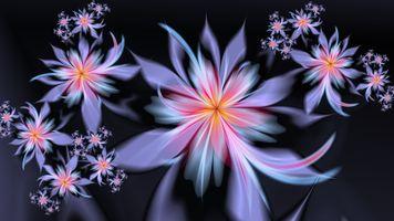 Фото бесплатно цветки, дизайн, рисунок