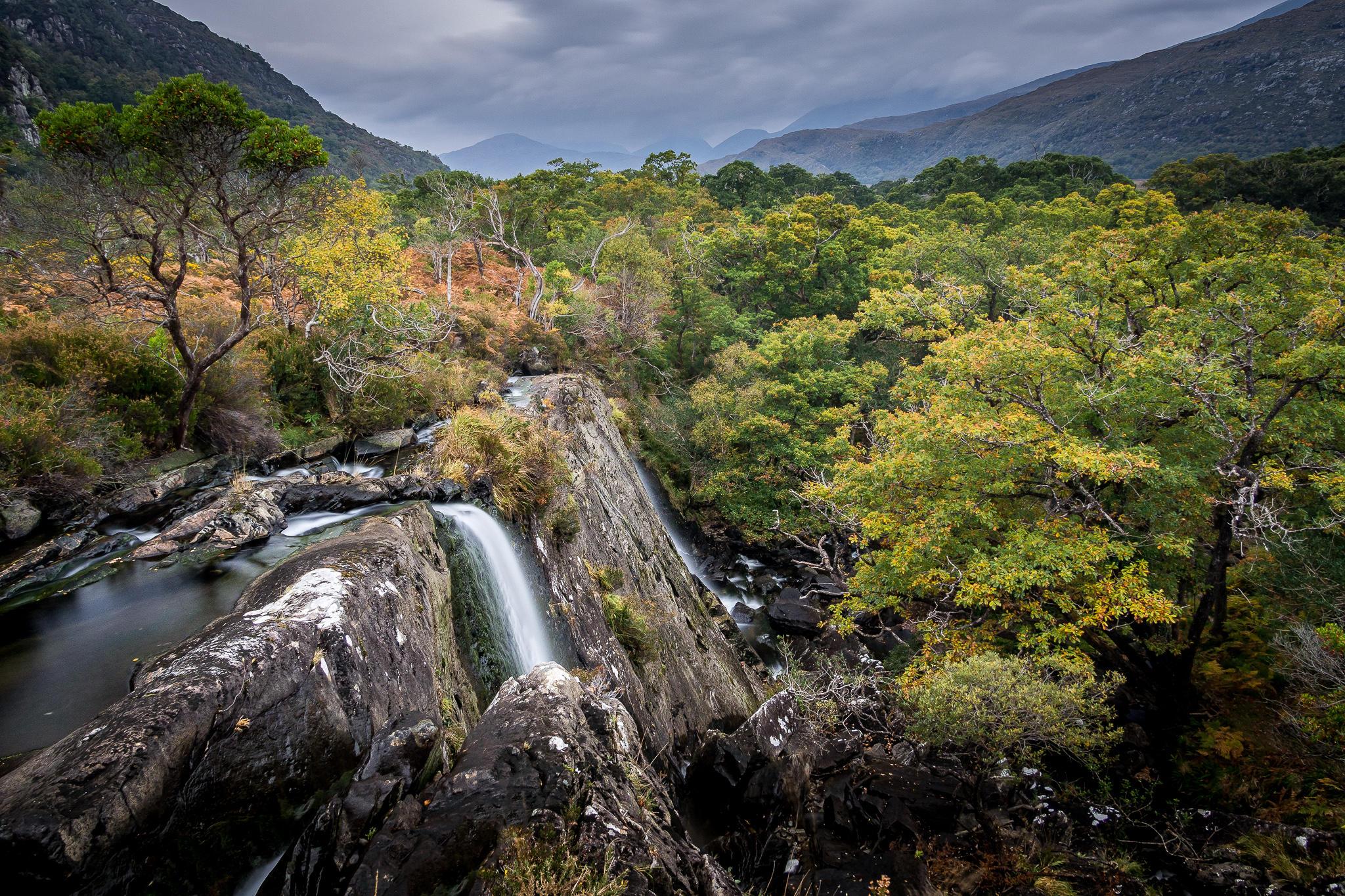Обои Округ Керри, Река Криннаг, Килларни, Ирландия