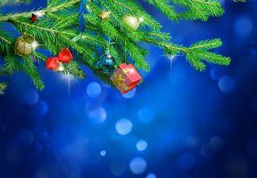 Photo free background, Christmas tree, decorations