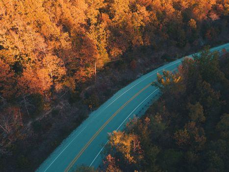 Фото бесплатно Road, Trees, Fall