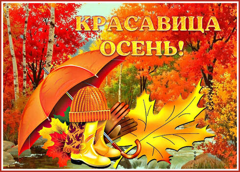 Postcard free beautiful picture beauty autumn, nature, leaves