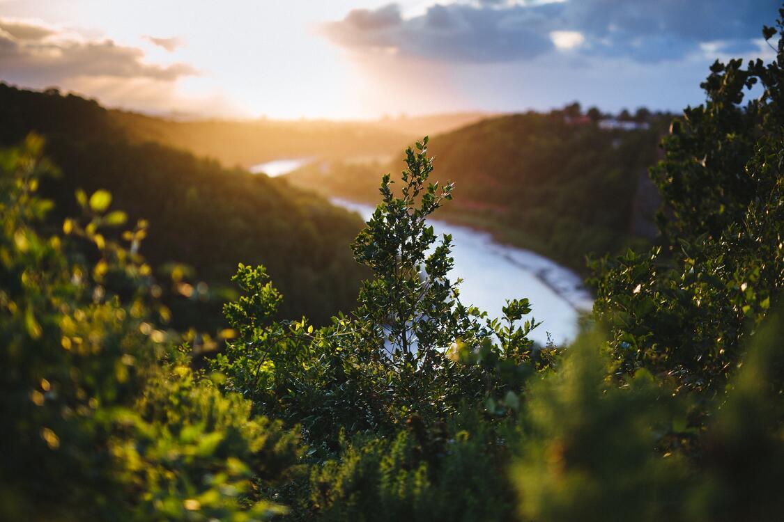 Фото луг солнечный свет река - бесплатные картинки на Fonwall