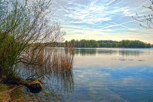 Фото бесплатно Сонненберг, пруд, рыболовный пруд