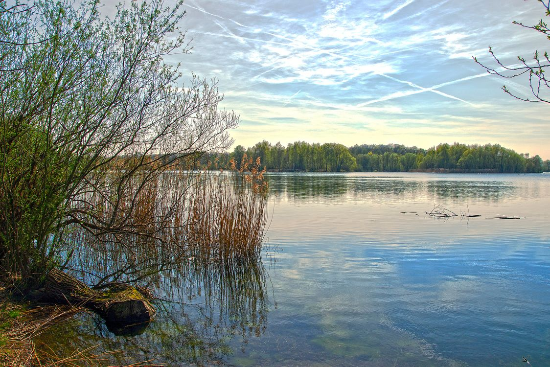 Фото бесплатно Сонненберг, пруд, рыболовный пруд - на рабочий стол