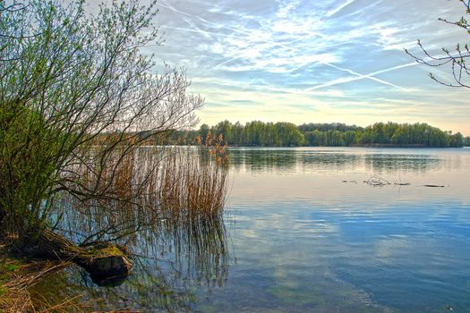 Бесплатные фото Сонненберг,пруд,рыболовный пруд,Hasselkampsee,Нижняя Саксония,Северная Германия,водоём,деревья,лес,небо,пейзаж