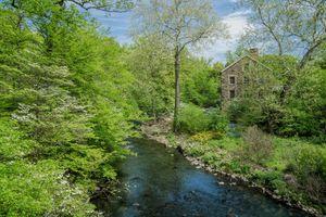 Фото бесплатно Ботанический сад, Нью-Йорк, Река Бронкс