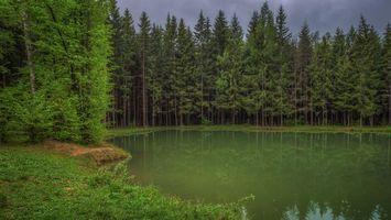 Бесплатные фото закат, лес, деревья, озеро, пейзаж, Московская область, Россия