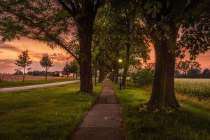 Фото бесплатно закат, дорога, парк